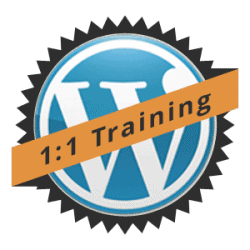 WordPress One on One Coaching