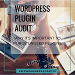 WordPress plugin audit graphic cover