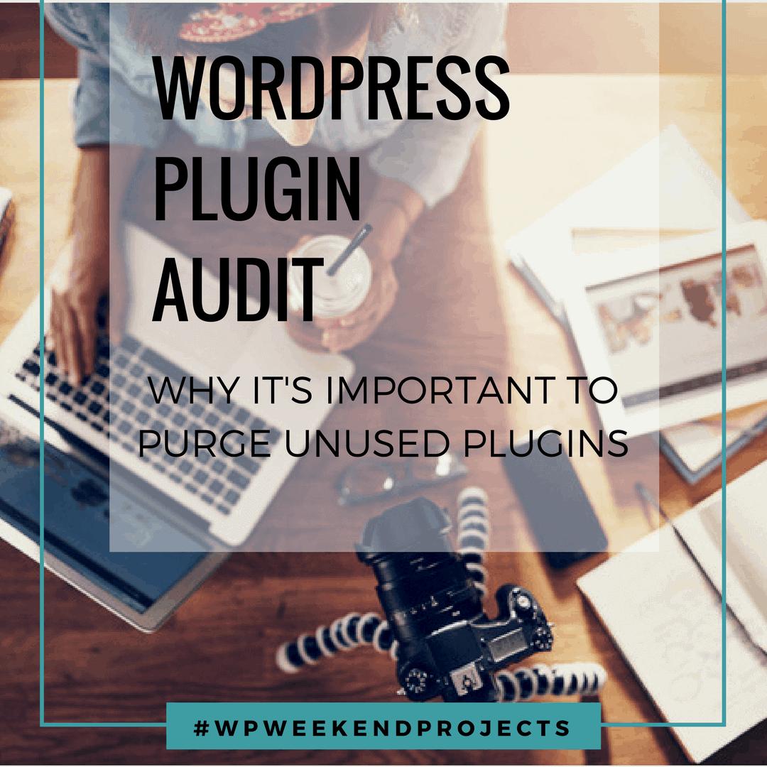 WordPress plugin audit graphic cover