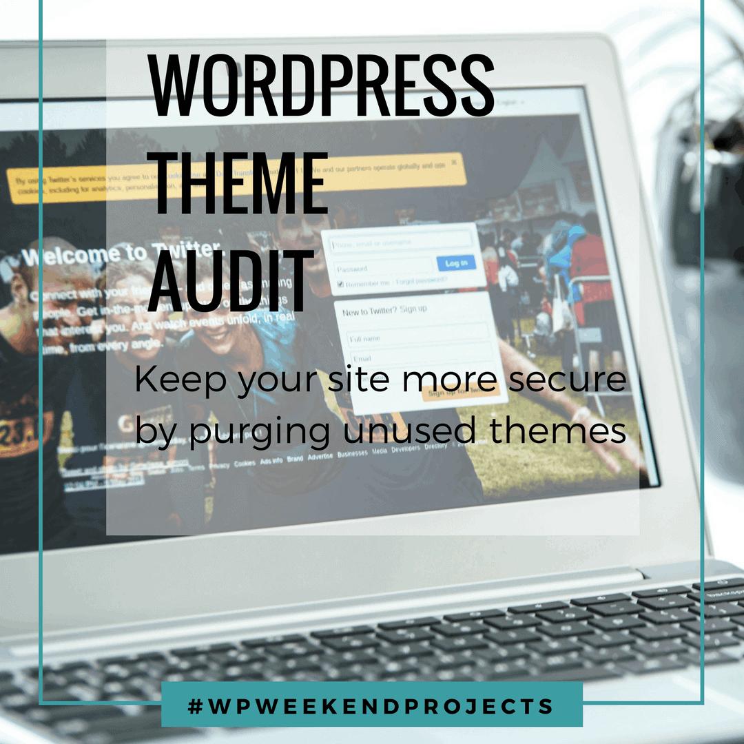 WordPress theme audit title graphic
