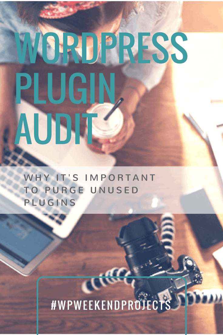 WordPress plugin audit graphic optimized for Pinterest